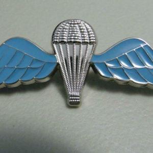 English Army Rifles British Military Lapel Pin Badge 1 Inch | Cordon